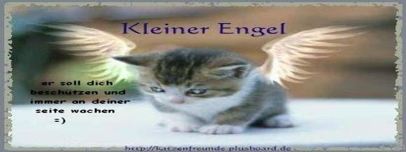 Stimmungsbild Kai Mayr 1